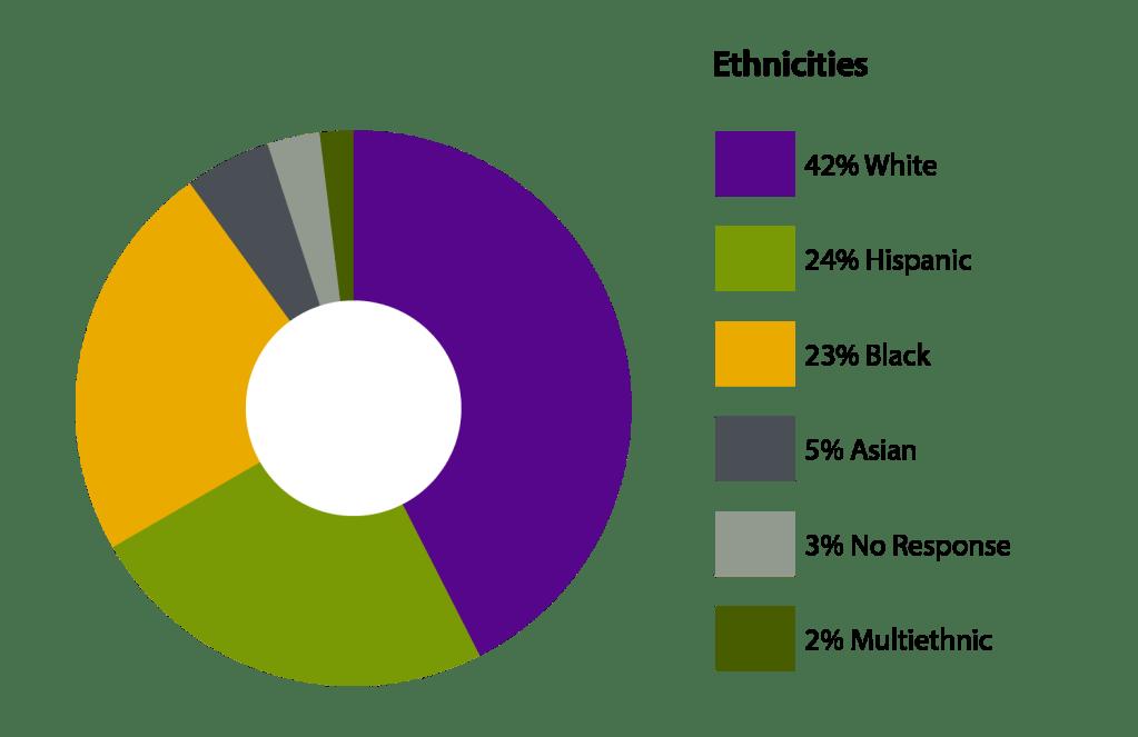 circle graph of ethnicity percentages. 42 percent white, 24 percent hispanic, 23 percent black, 5 percent asian, 3 percent no response, 2 percent multiethnic